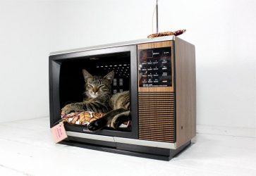 Что можно сделать со старым телевизором?