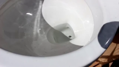 Как убрать ртуть из унитаза?