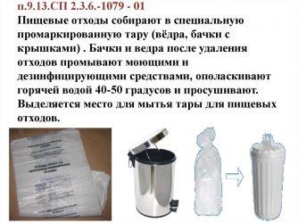 Утилизация пищевых отходов в детском саду САНПИН