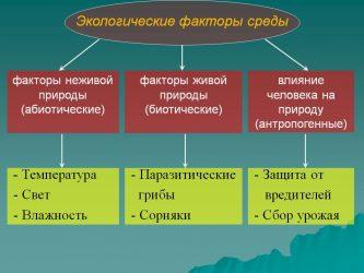 Экологические факторы неживой природы называются